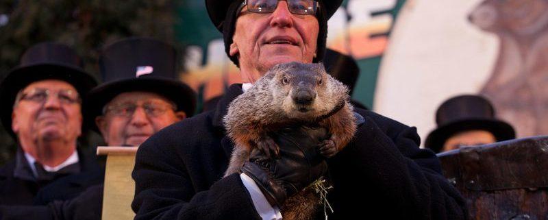 Punxsutawney Phil being held on Groundhog Day