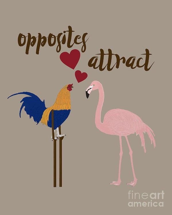 Opposites attract art by Priscilla Wolfe